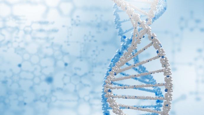 2019年度中国生命科学十大进展入选的基因编辑、抗结核新药等成果技术